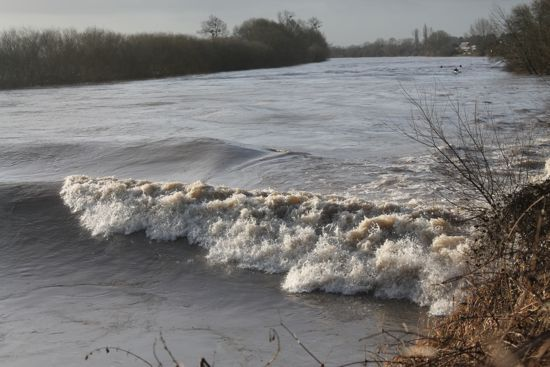 2.During the floods, the Sarkars and friends went to witness the Severn Bore in Gloucestershire. Because of the presence of migratory fish, the VBS is also able to provide support in estuarine enforcement and intelligence gathering.