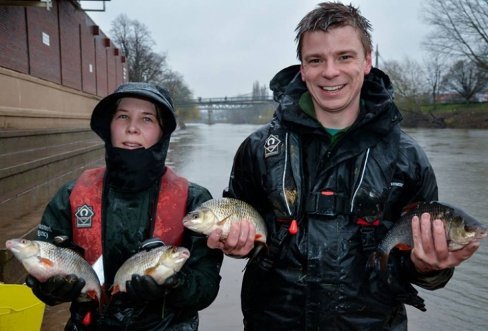 Brecht Morris and colleague of the Environment Agency with some beautiful roach rescued from Pitchcroft in Worcester during recent floods. While there are still some fantastic silver fish in the river, there have been many concerns about fish stocks overall in recent years.