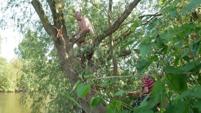 Ian Climbing Tree