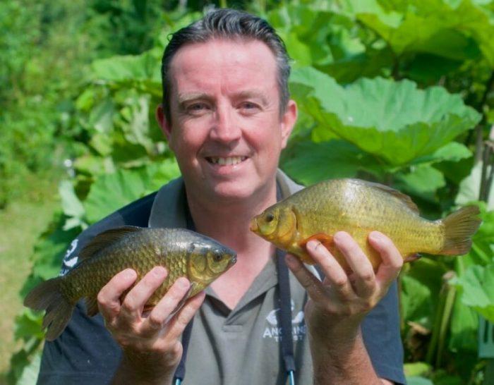 crucian carp fishing how to catch