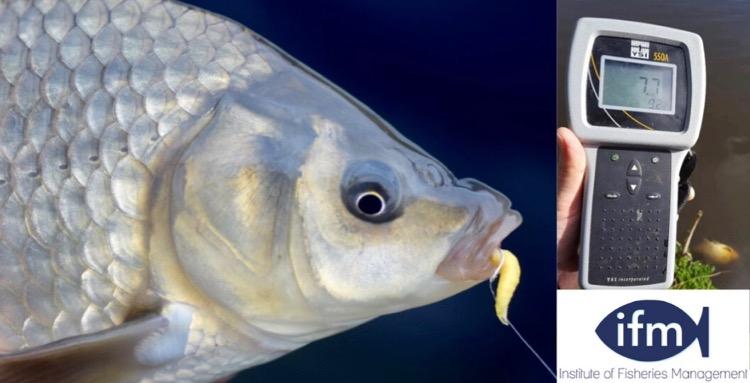 Fisheries Management During the Coronavirus Pandemic — Lines on the Water - Rebel Fisherman Referrals